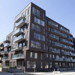 Murerservice Køge, Sjælland, Cobrahaven i København S